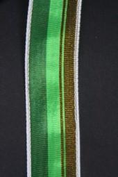 Santos grün 25 mm 15 m